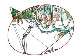 visuel rosenberg